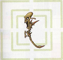 Hypocampos